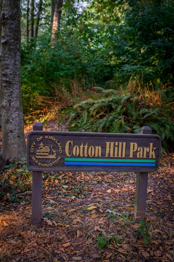 CottonHillPark.jpg