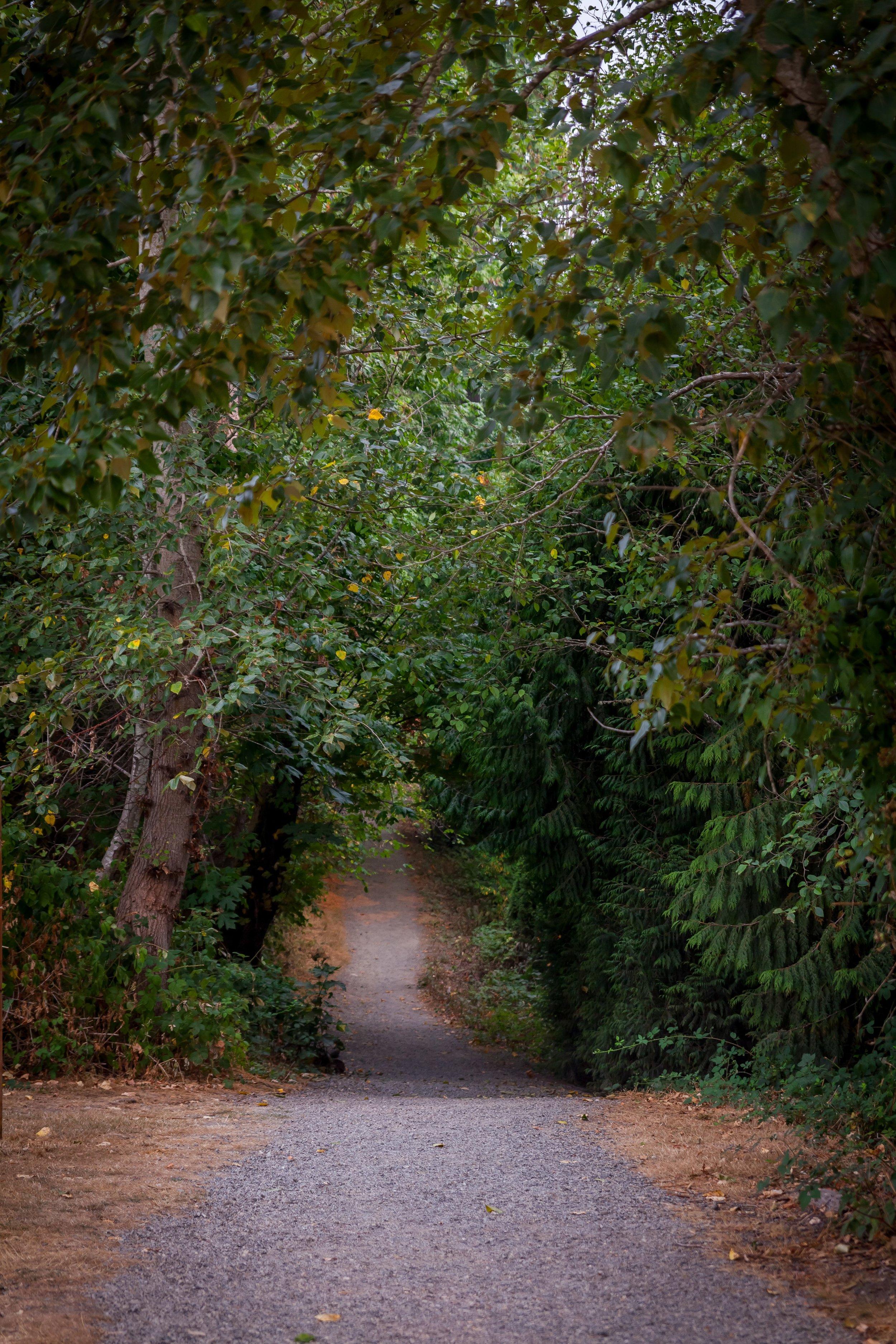 CrestwoodsPark2.jpg
