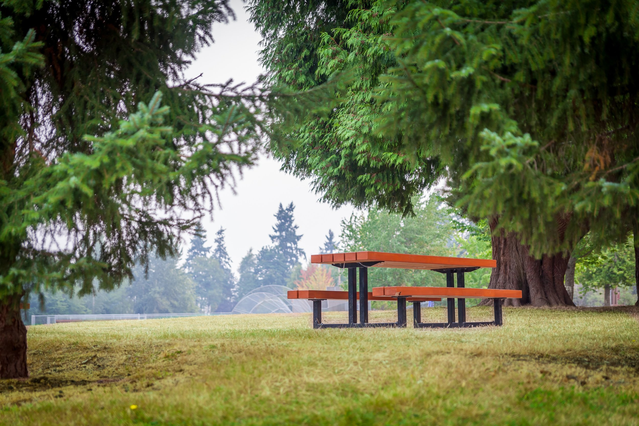 CrestwoodsPark13.jpg