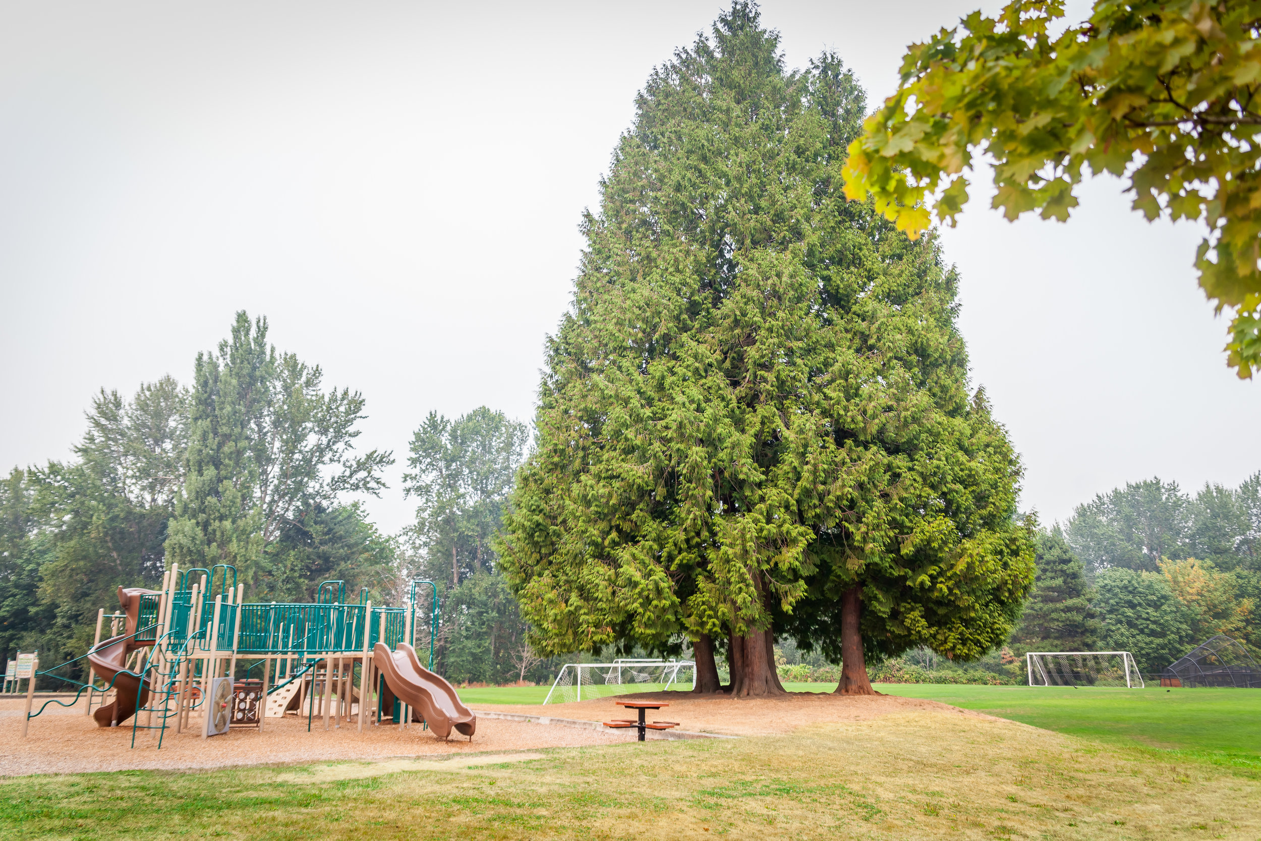 CrestwoodsPark14.jpg
