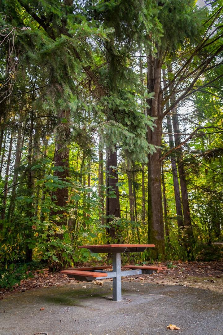 WoodlandsPark8.jpg