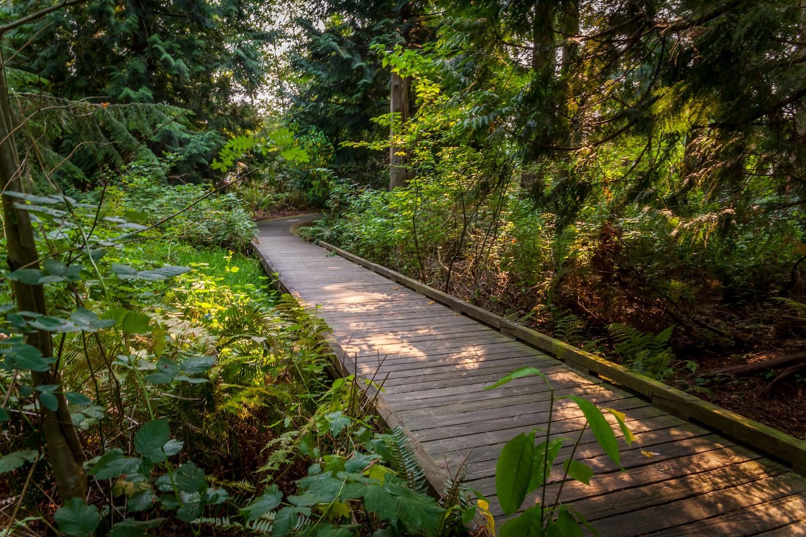 WoodlandsPark9.jpg
