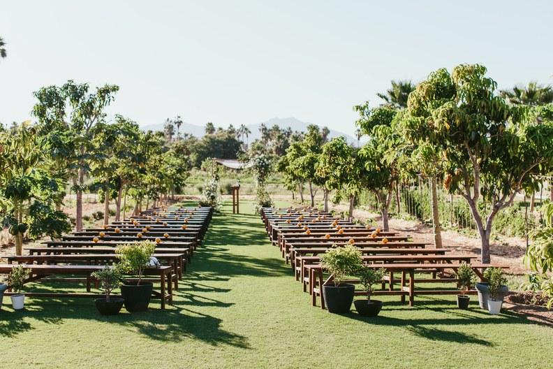 ashley-nachum-and-brandon-allen-wedding-flora-farms2018011114_.jpg