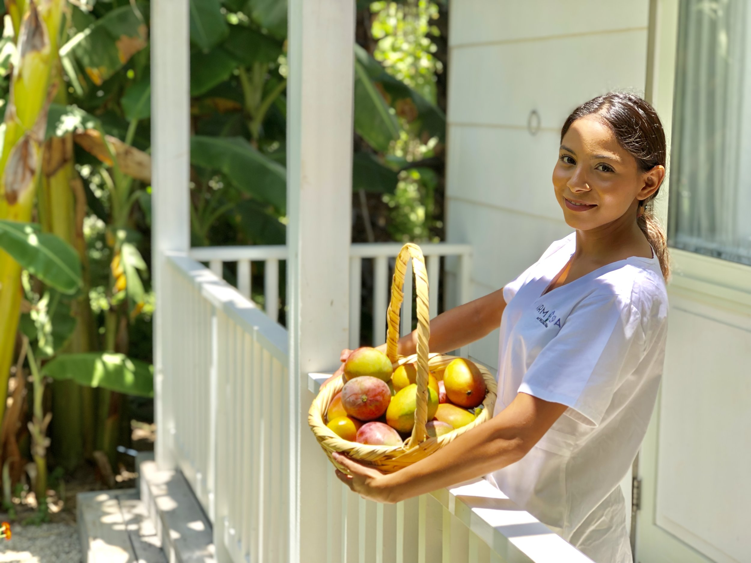 August is Mango Madness - Farm Spa Late Summer Specials