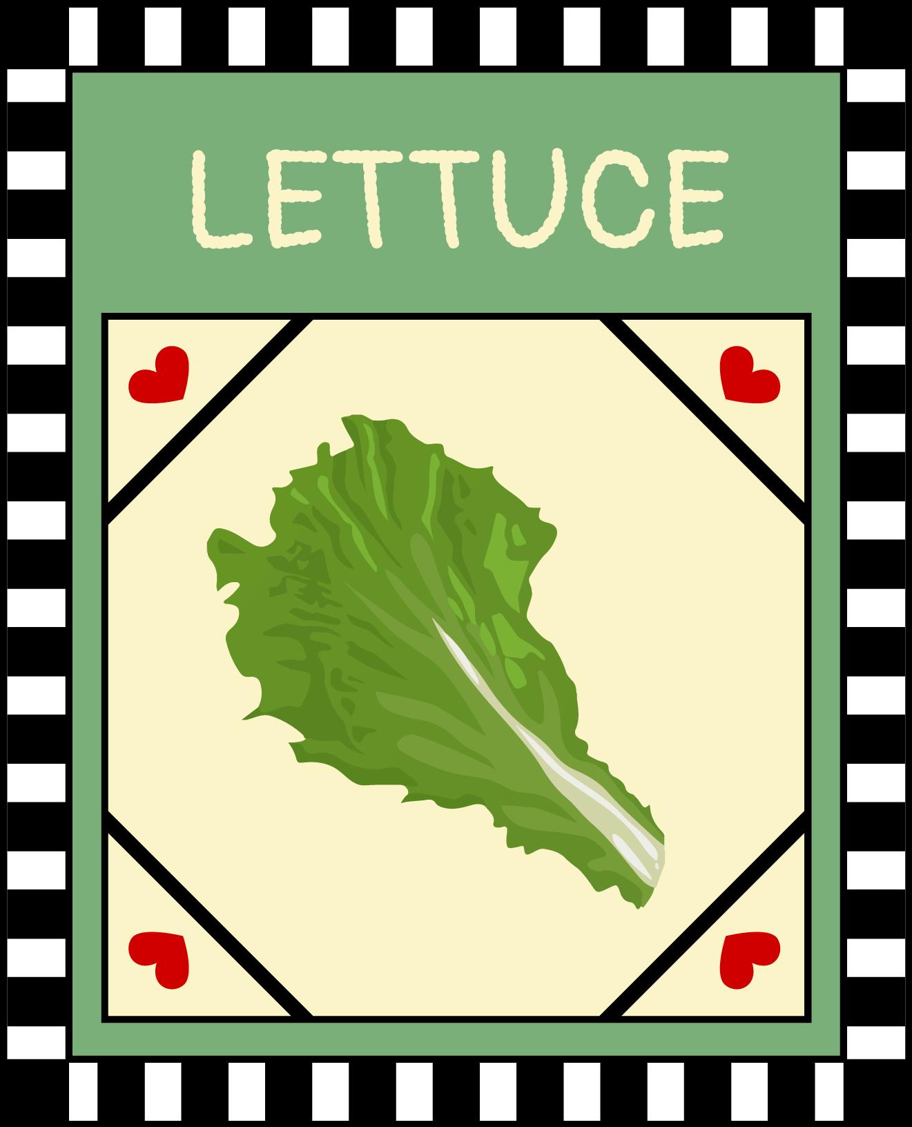 Lettuce / Kale