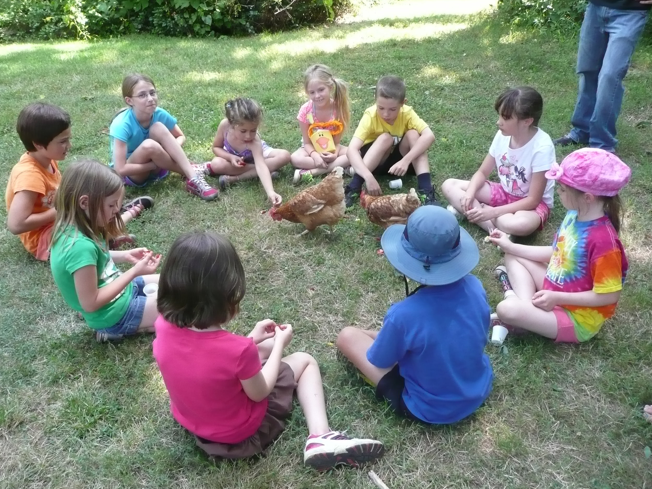 Kids in Circle with Hens.JPG