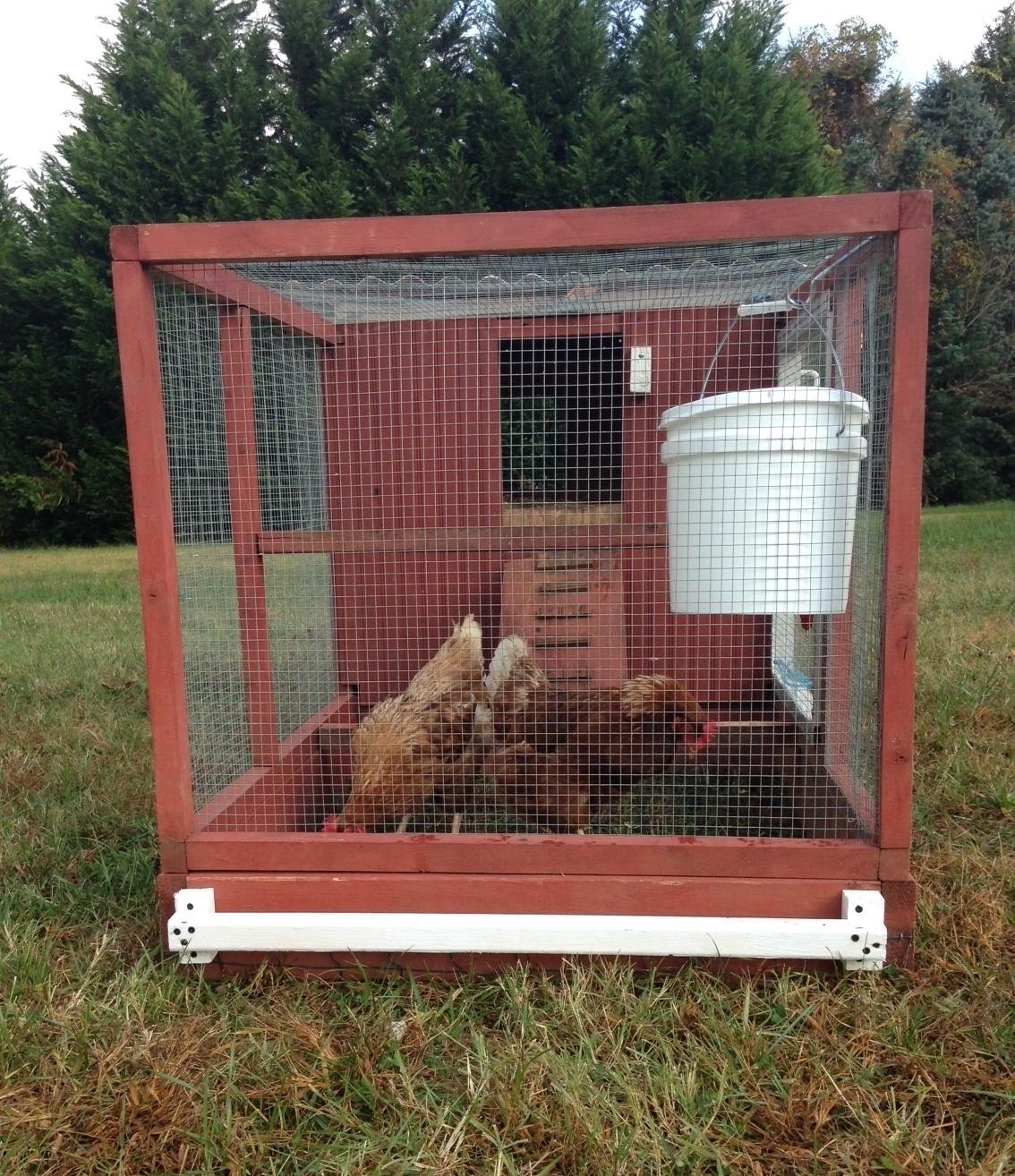 Are Chicken Coops Predator Proof?