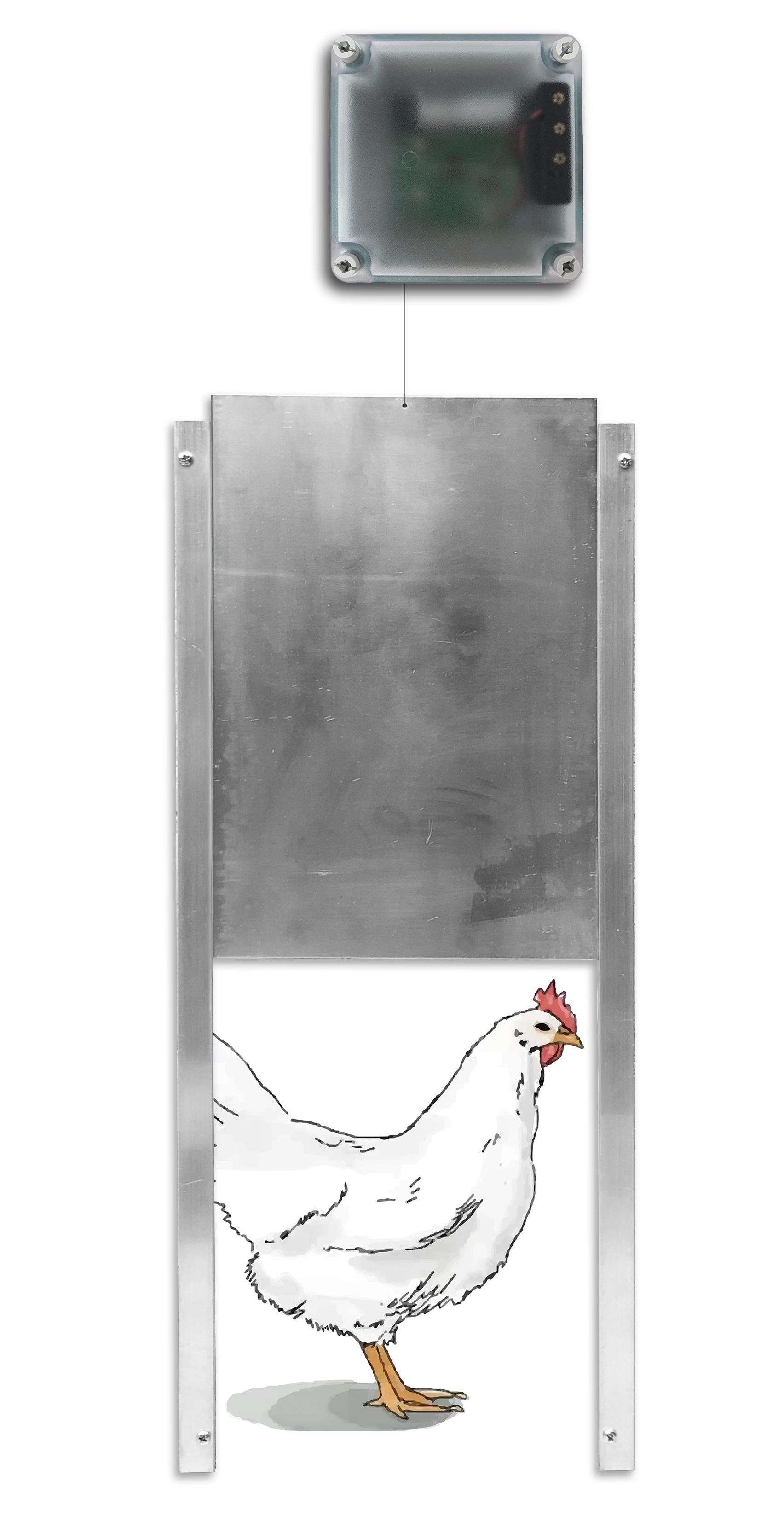 Automatic Door (Timer & Light)