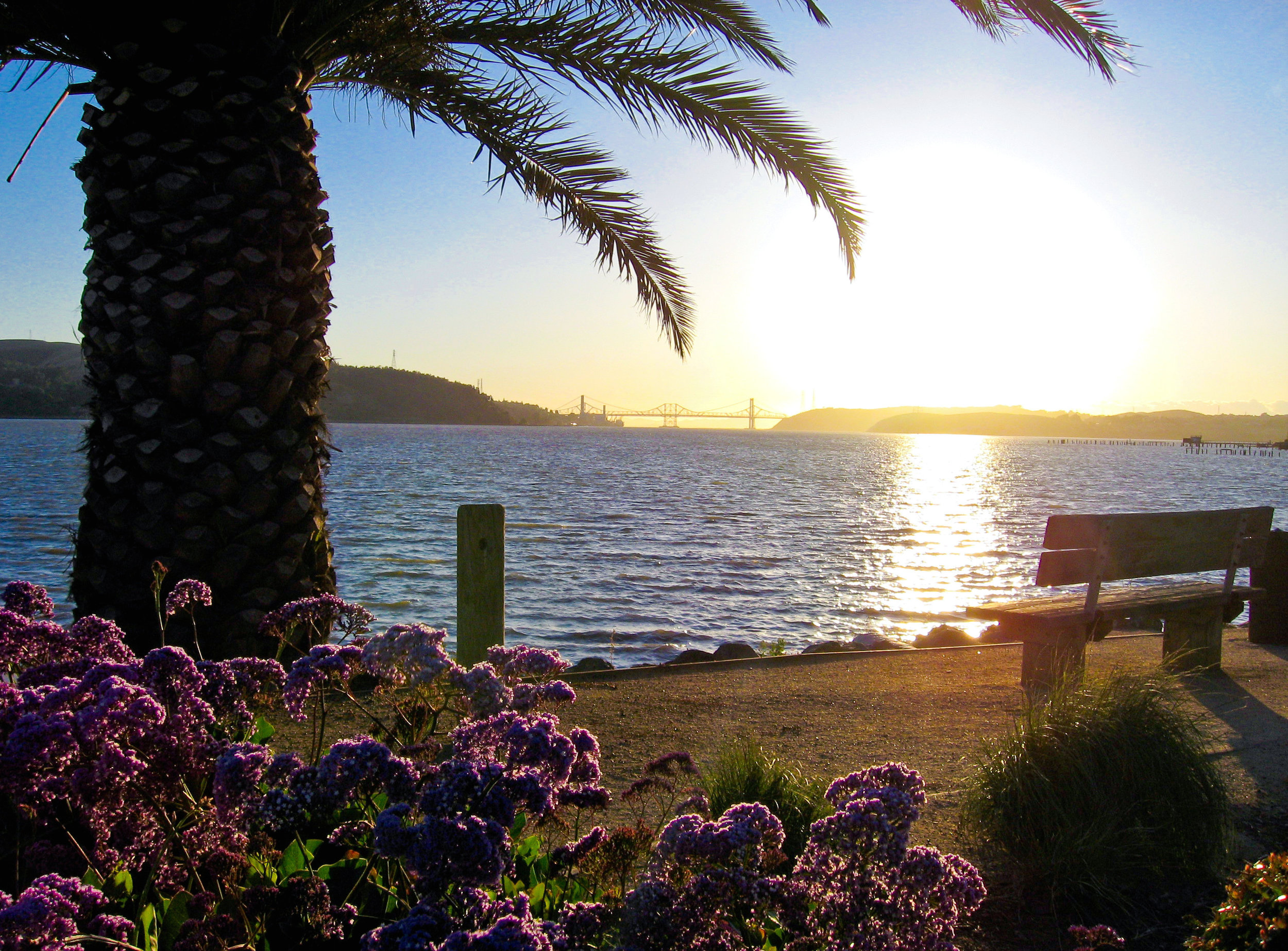 Scenic, Fun-Benicia Sunset on Bench-Bryan Maxwell (1).jpg