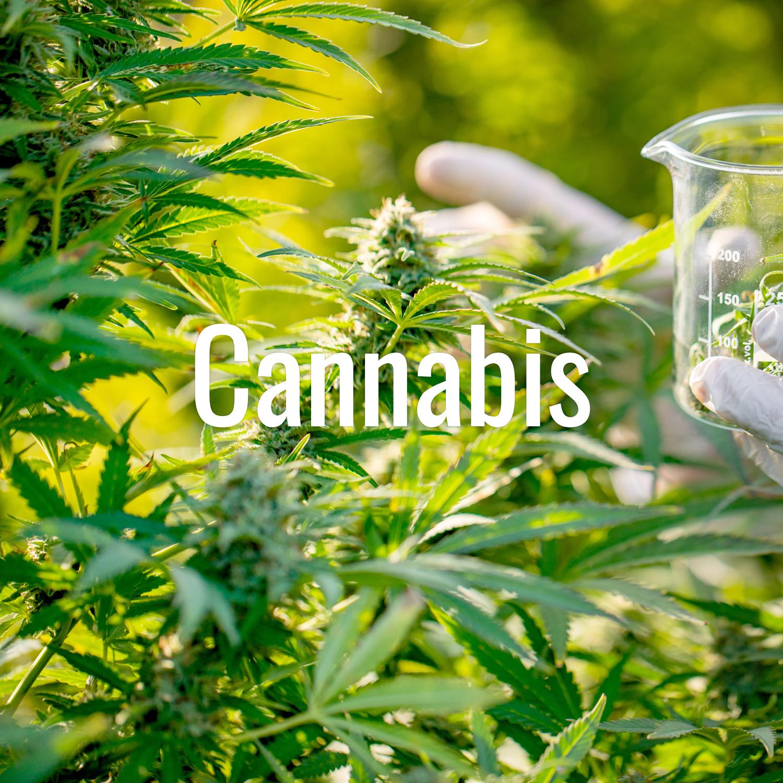 cannabis-toolbox_th.jpg