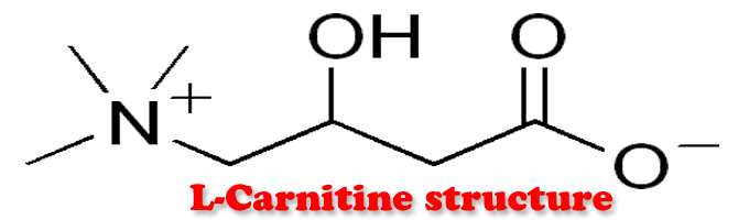 l Carnitine Deficiency and Testosterone Therapy