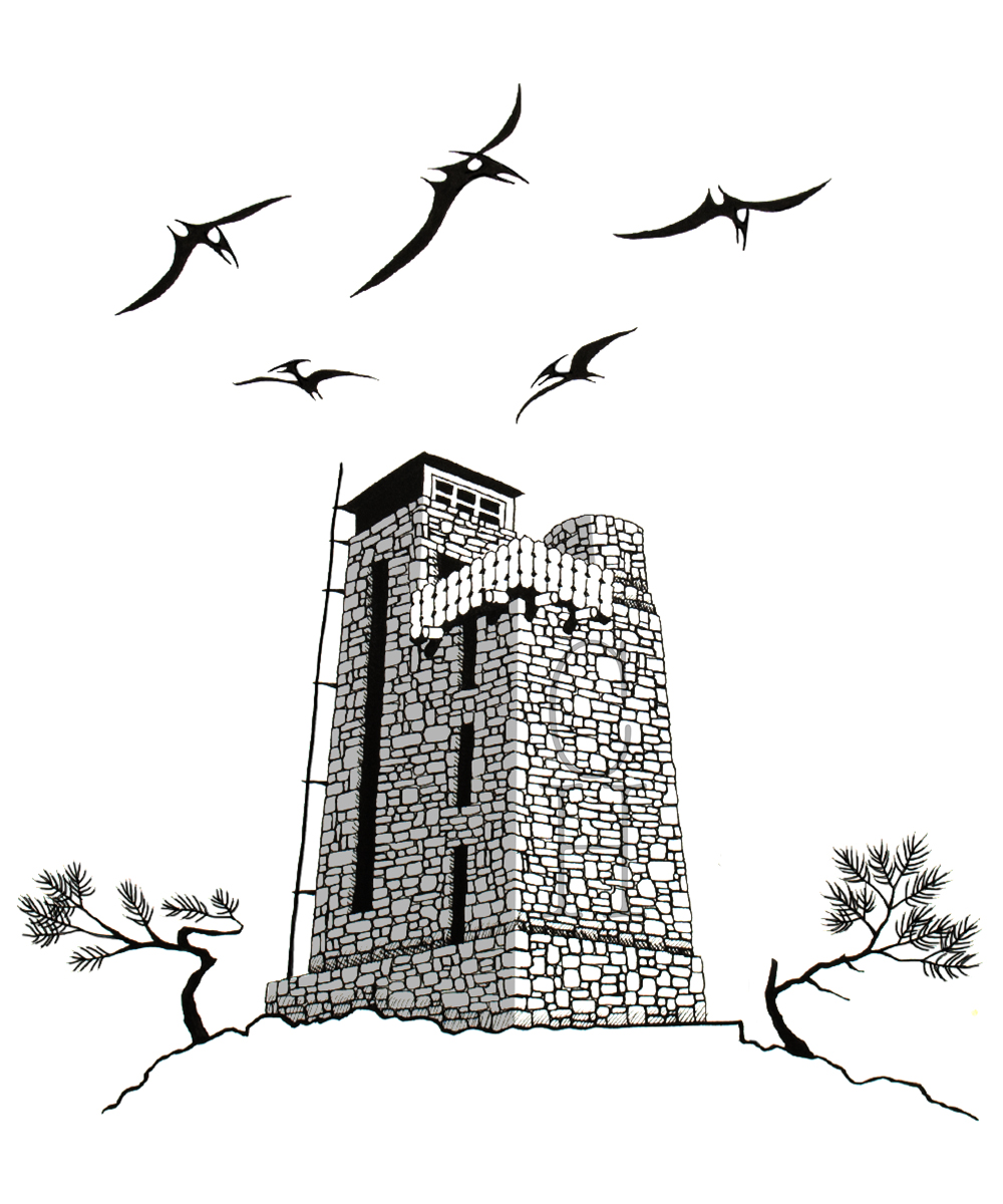 "Mount Constitution Tower  India Ink on Paper  12"" x 13""  $1285"