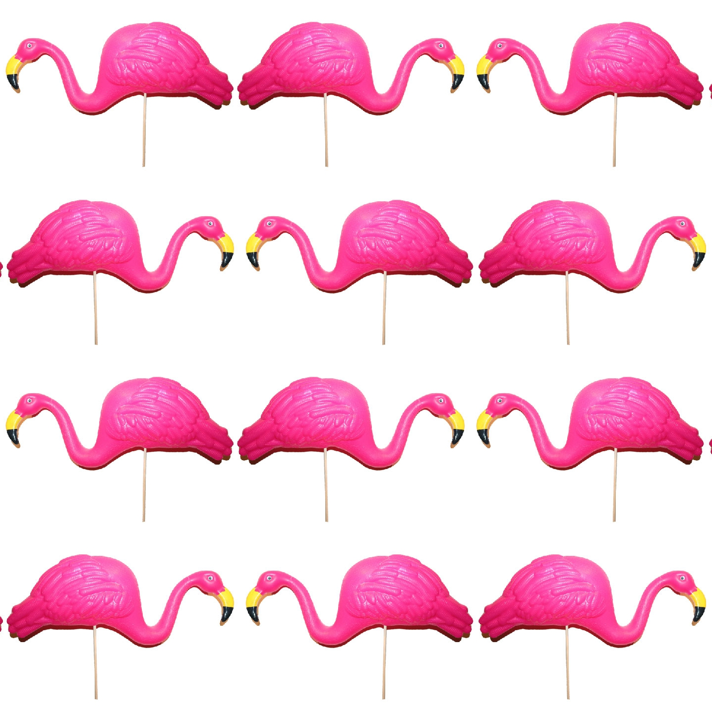 flamingo-01.jpg