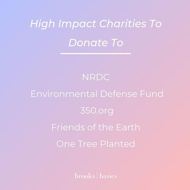 Looking to help combat climate change? Besides voting & spreading the word, donating to high-impact charities is one of the most important ways you can contribute.⠀ Why is it important?⠀ -These charities can have higher impact that personal action can: they can spend donated money on lobbying, advertising, research, legal action, and more.⠀ How did I pick these charities?⠀ -I found charities with a high Charity Navigator score. One tree planted is not rated by them yet, but I included them because 1$-per-tree is a pretty direct way you can contribute to reforestation, and this is a pretty direct way to have impact!⠀ What are other ways you can contribute?⠀ -Vote. Spread the word. Talk about climate change. For more detailed steps on actions to take, check out my blog post: Climate Change Action Guide.⠀ .⠀ .⠀ .⠀ .⠀ #climatechange #climate #carbon #globalwarming #environment #environmentalism #health #unep #ipcc #gretathunberg #fridaysforfuture #climateaction #climatestrike #greenliving #zerowaste #zerowasteliving #ecofriendly #holistichealth #trump #dnc #nature #today