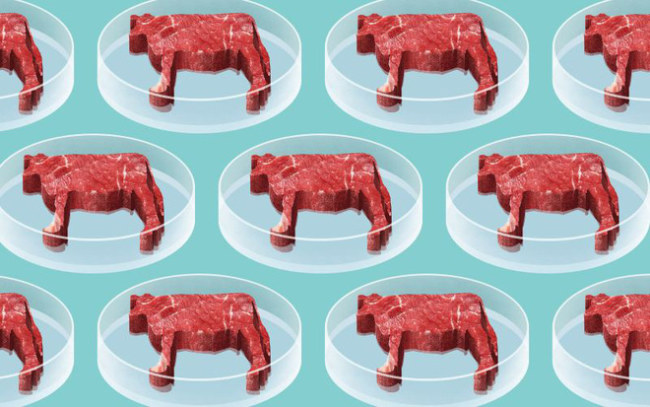 Thịt nhân tạo suy cho cùng vẫn là sản phẩm phụ của ngành công nghiệp chăn nuôi.