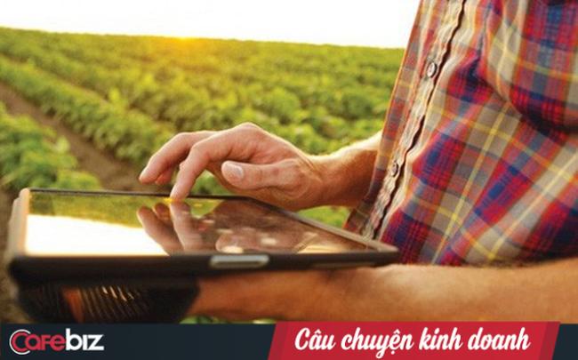 xoai-blockchain-3-1544786104140783332995-15447861116911041117290.png