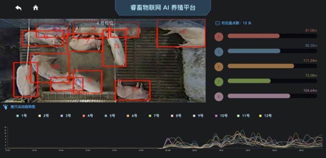 Công ty trang trại công nghệ cao SmartAHC ở Trung Quốc gắn thẻ vào tai lợn để theo dõi thân nhiệt, sức khỏe. Ảnh: SmartAHC.