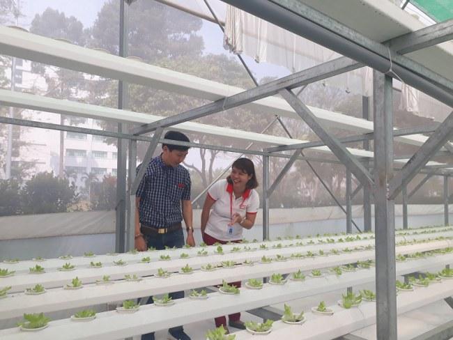 Khu thực nghiệm nông nghiệp công nghệ cao tại QTSC. Ảnh: Hà Thế An.