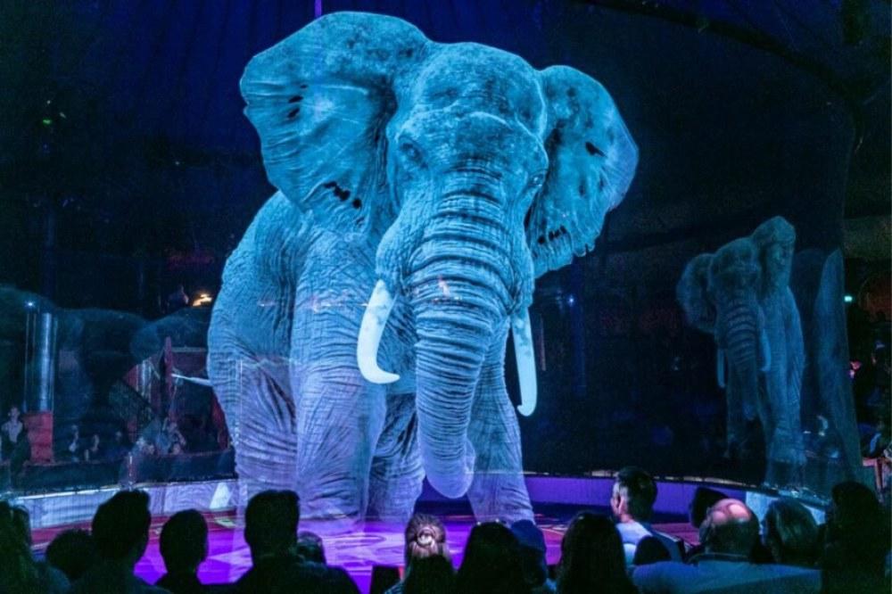 circus-animals-2-889x592.jpg
