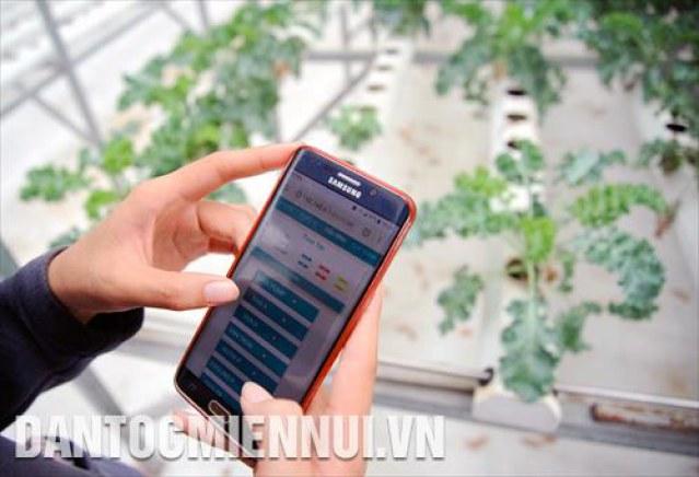 Ứng dụng công nghệ thông tin trong việc trồng và chăm sóc rau tại nông trại thực nghiệm thuộc Công viên Phần mềm Quang Trung (thành phố Hồ Chí Minh).