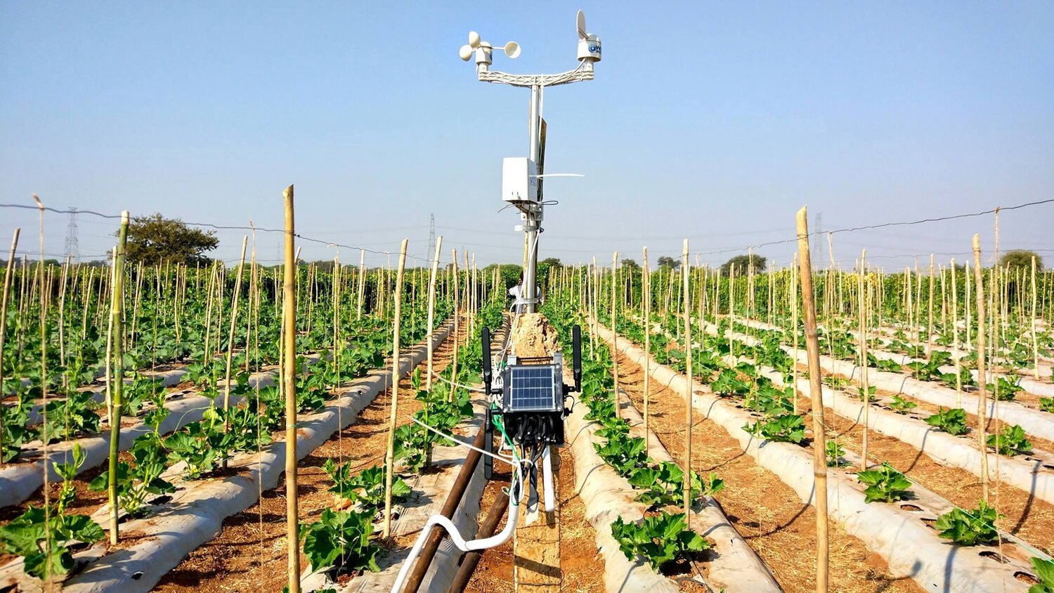 How_Can-Artificial-Intelligence-and-Satellite-Monitoring-Advance-Agriculture.jpeg