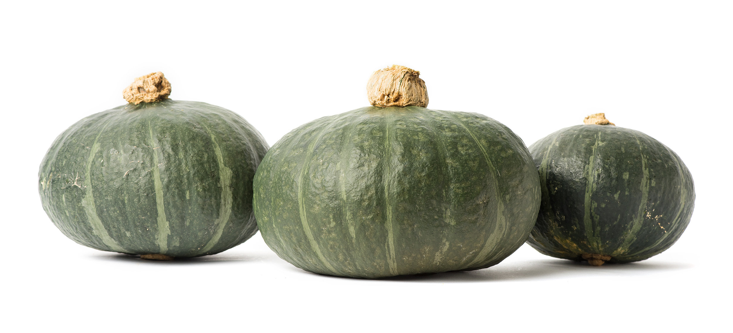Sweet Mama, our favorite green kabocha.
