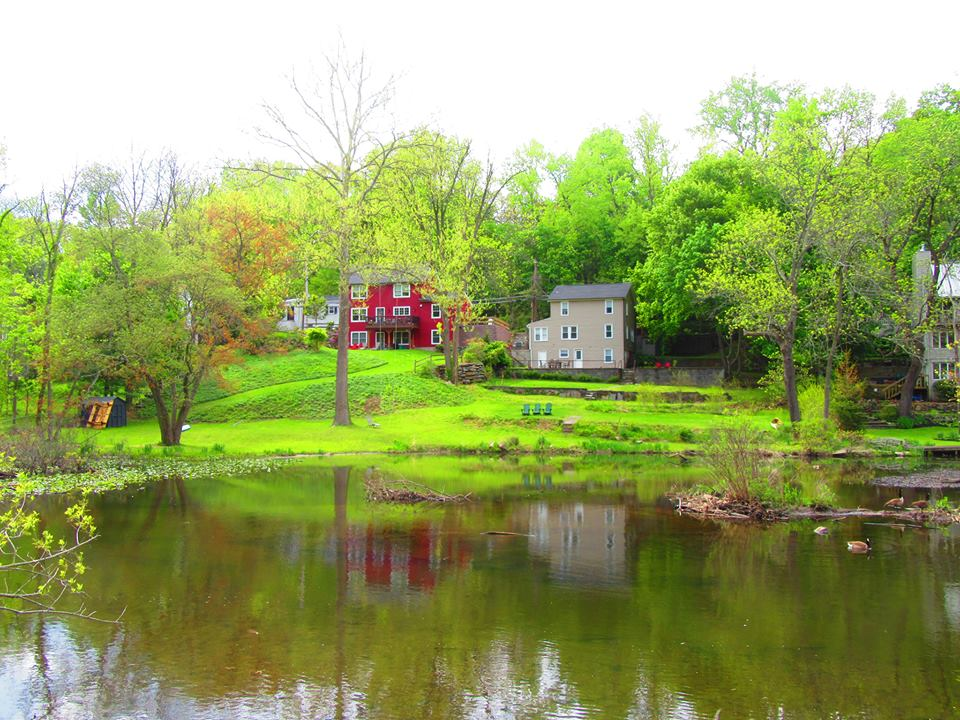 creekside neighbors.jpg