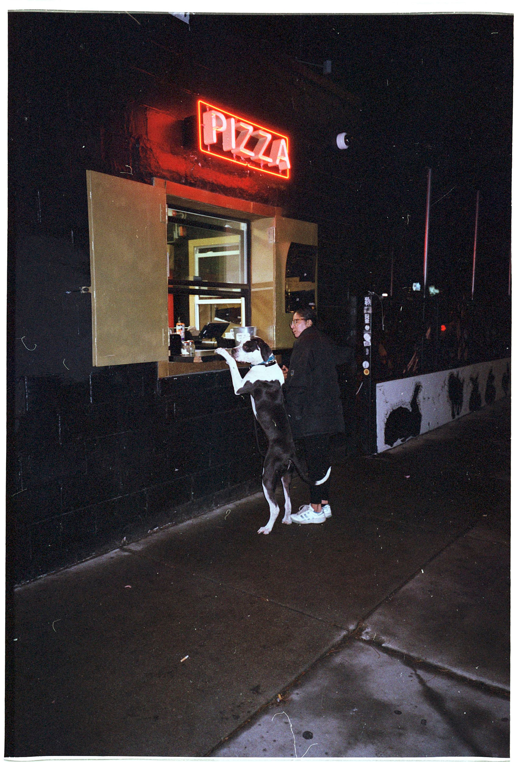 pizza-pup.jpg