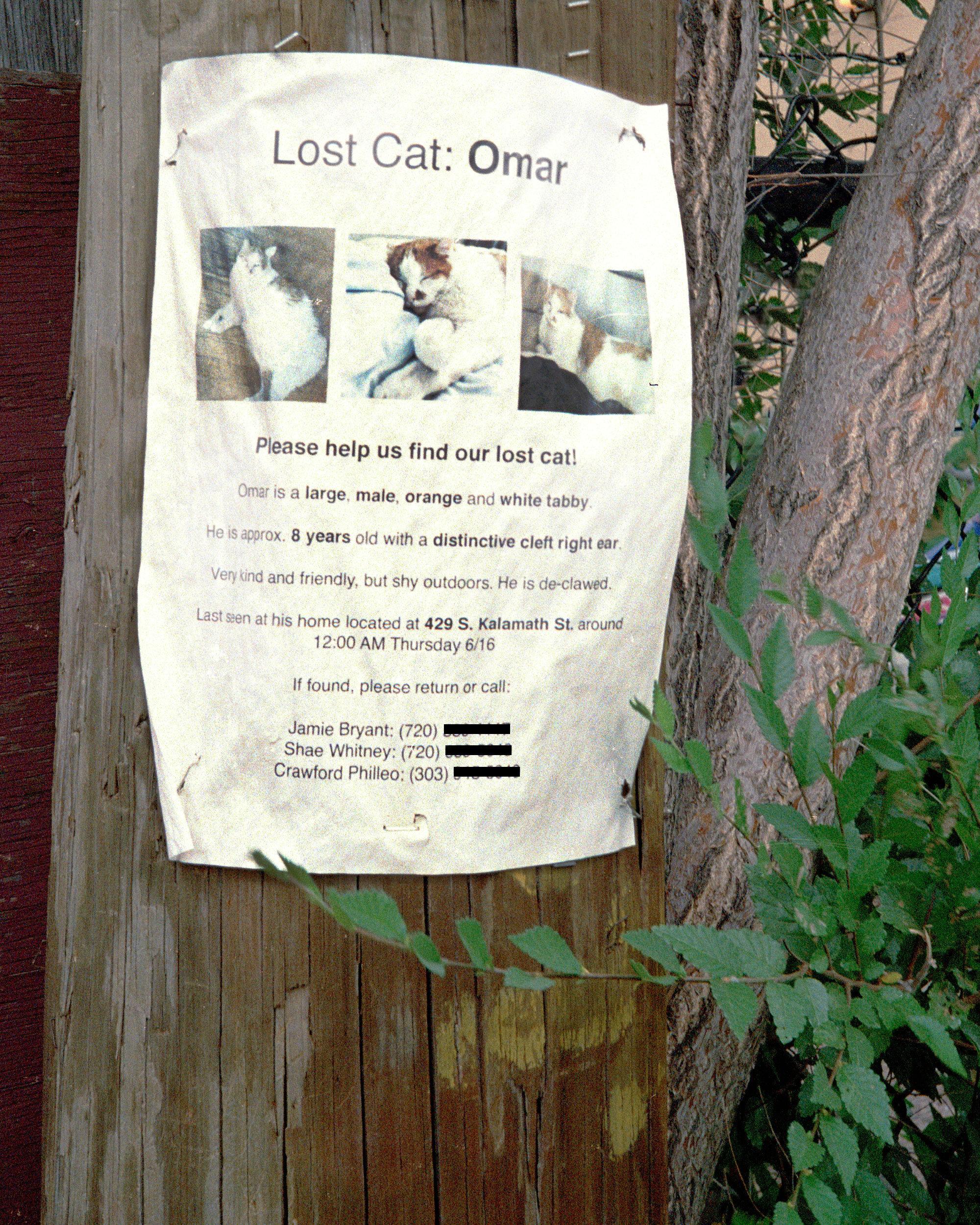 lost-omar.jpg