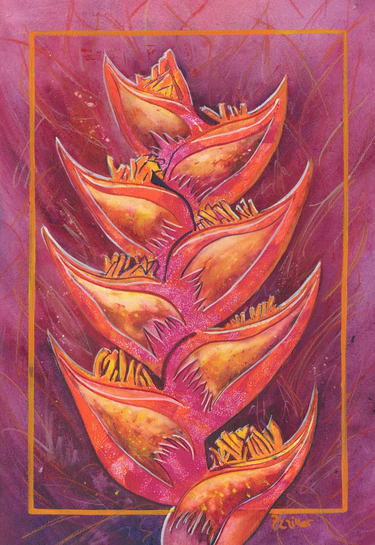 Heliconia Mystique