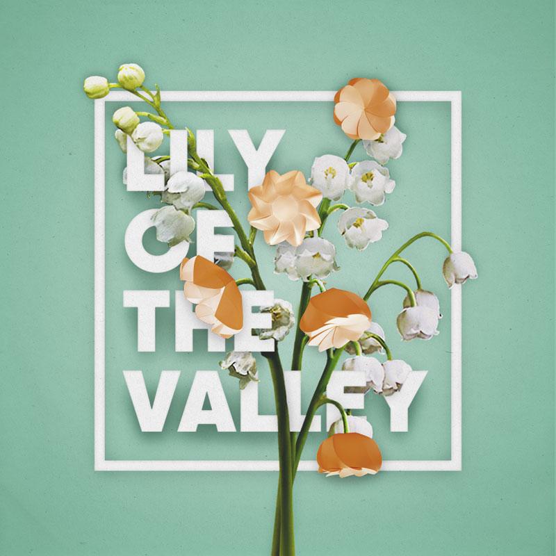 lilyofthevalley-sml.jpg