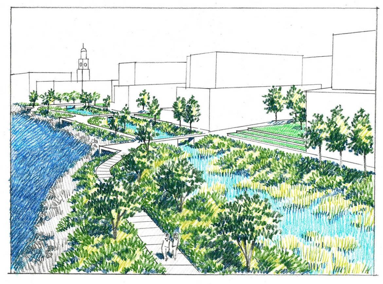BOA Concept Parkland.jpg