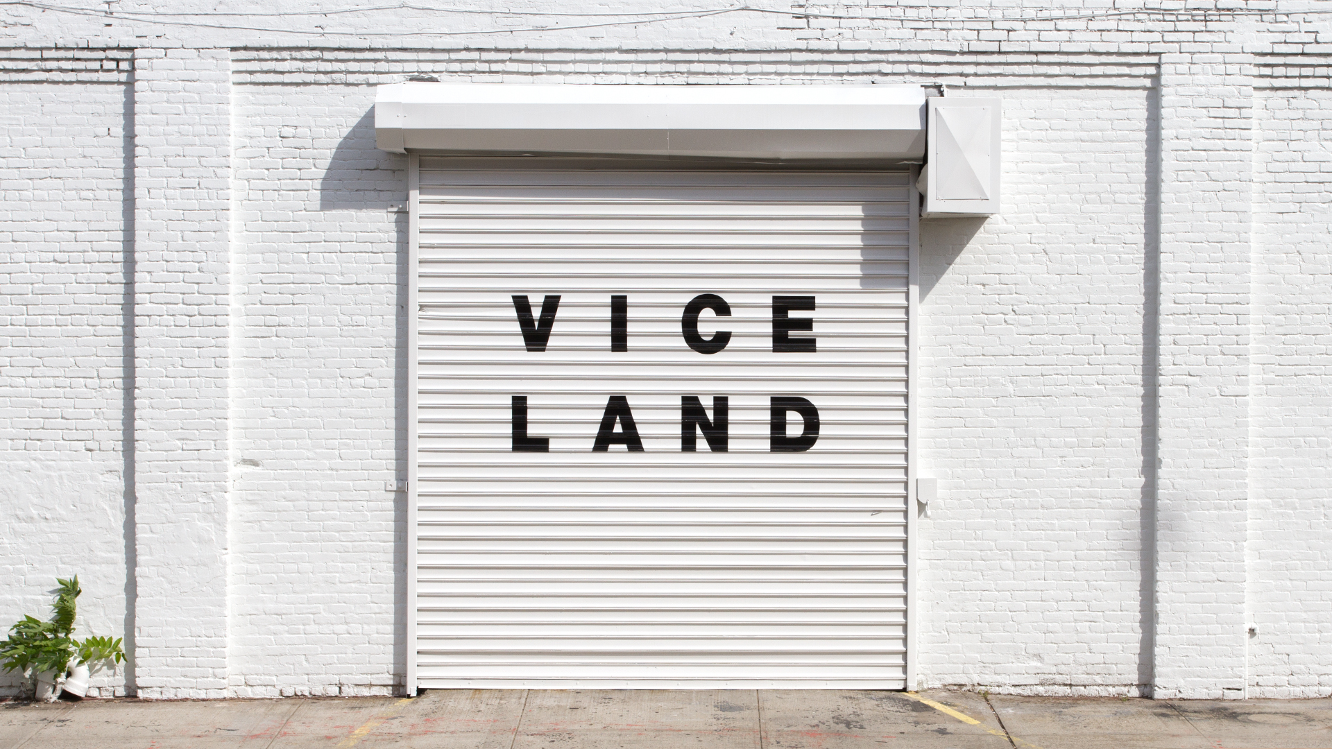 Viceland_The_Unbrand_15.jpg