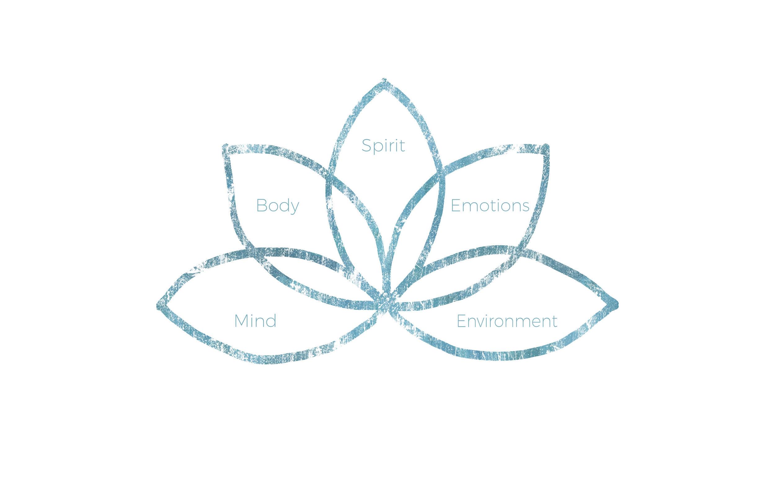 lotus-5foci.jpg