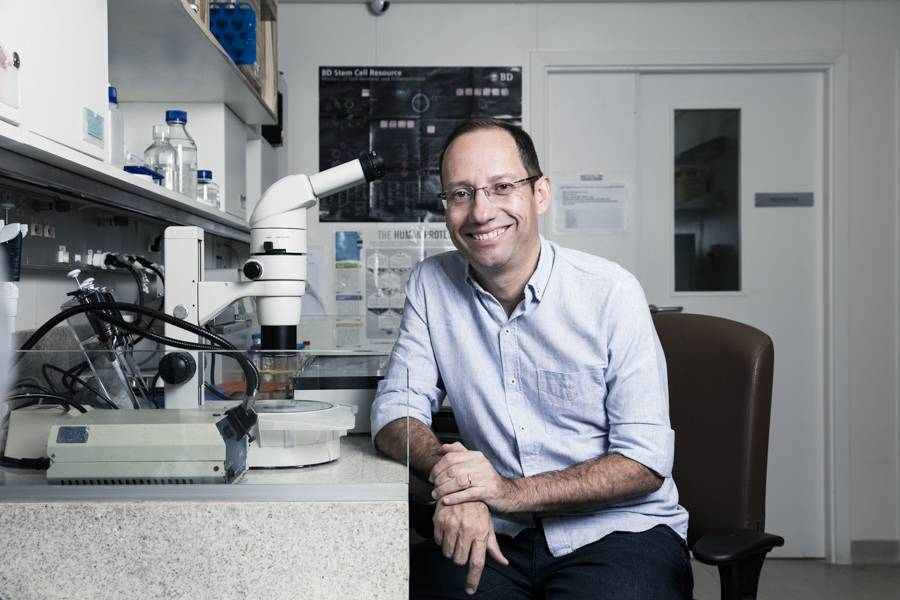 Stevens Rehen: Stem Cell Biologist currently investigating the effects of Harmine, NN-DMT and 5-MeO-DMT in human brain tissue differentiated from induced pluripotent stem cells