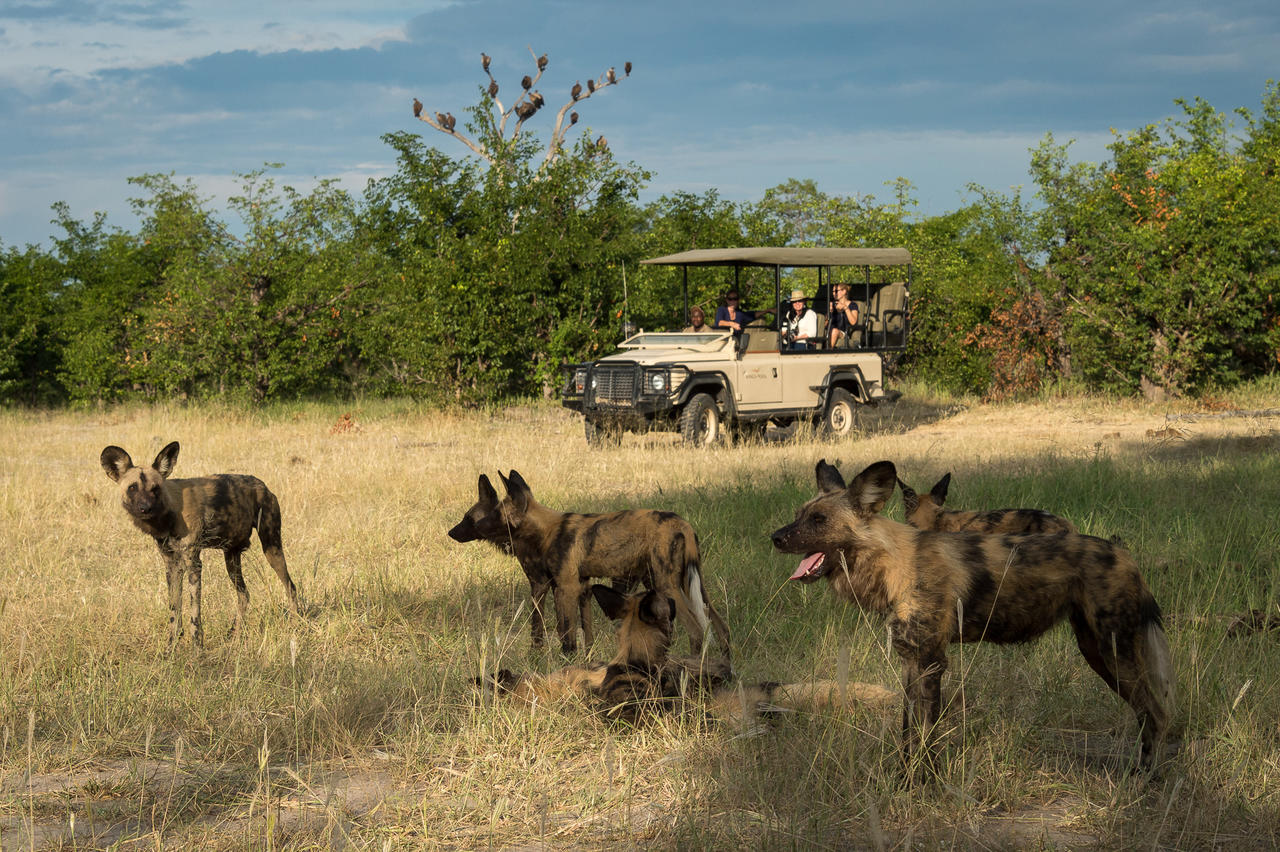 African Footprint Safaeris - Safari 2.jpg