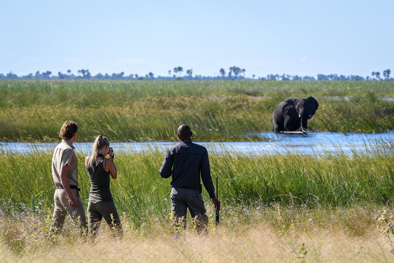 African Footprint Safaris - walk.jpg
