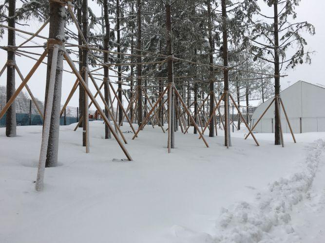 Winter_paralympics small-IMG_1687.jpg