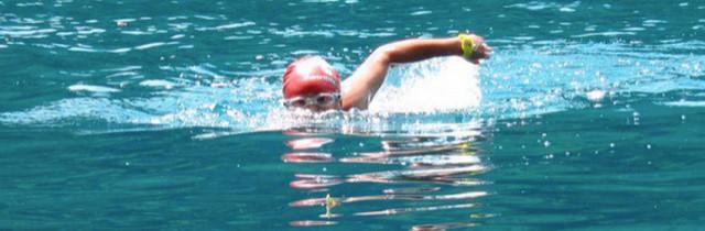 sighting-open-water-swimming 640x210.jpg