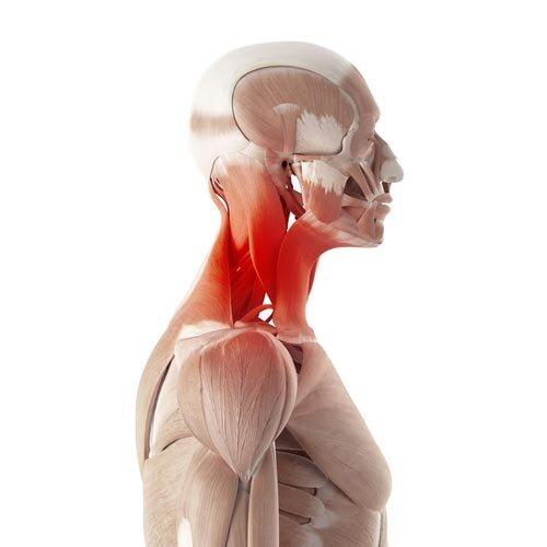 neck shoulder pain