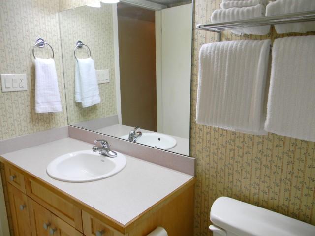guestbath2.jpg