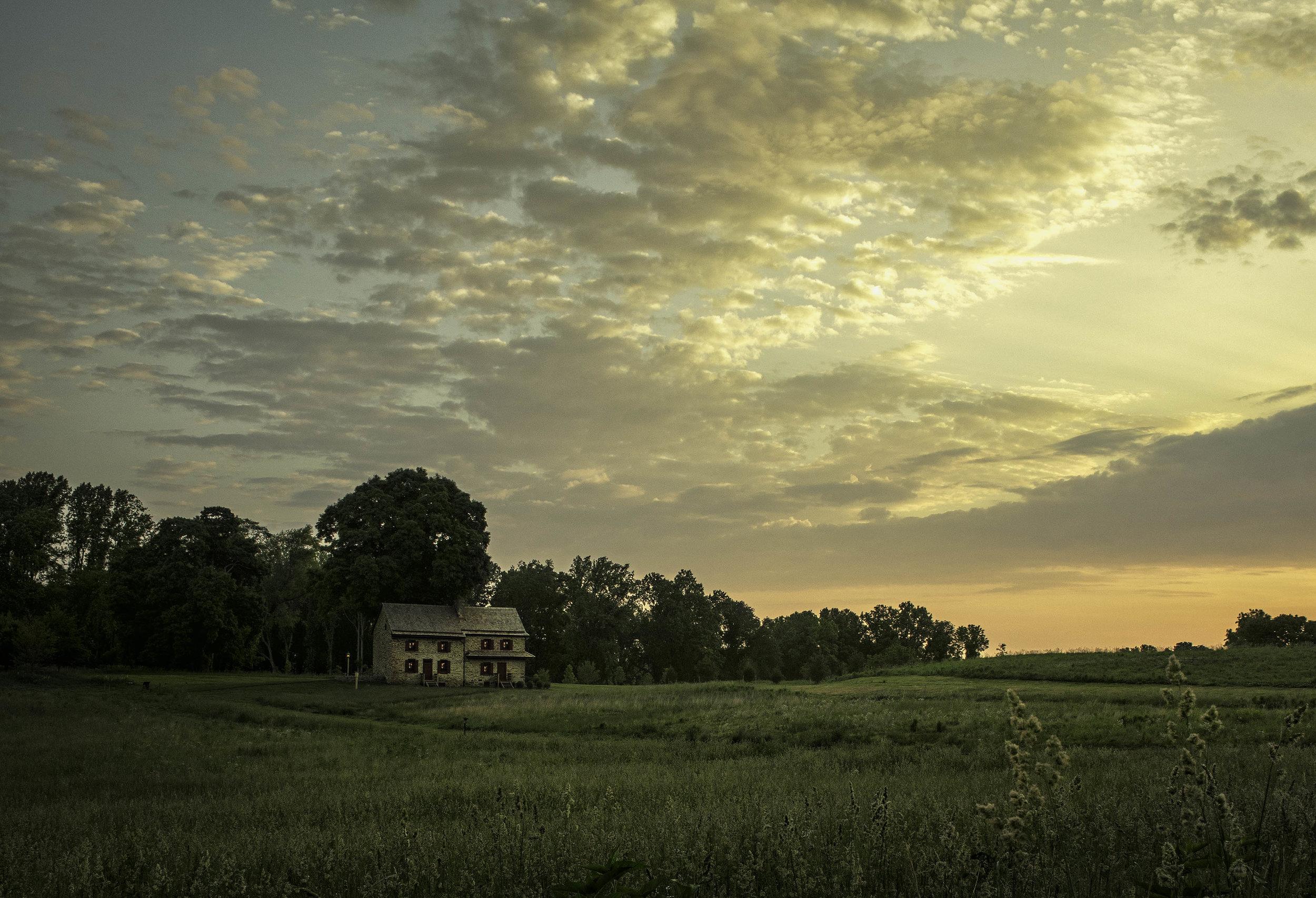 141591_Meadow_Sam Markey Photography.jpg