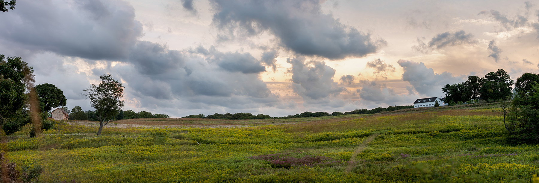 152837_Longwood_Meadow_-_Sunset_Davis_Harold_Hank_Longwood_Volunteer_Photographer_small.jpg