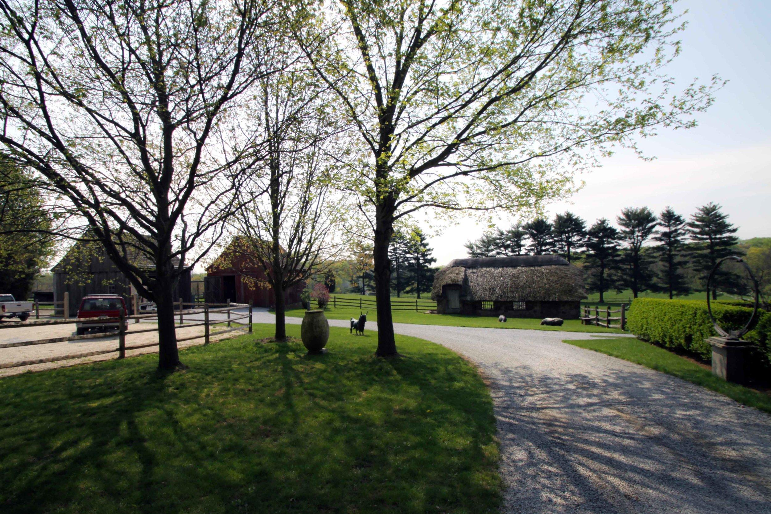 Chester-County-Farm12.jpg