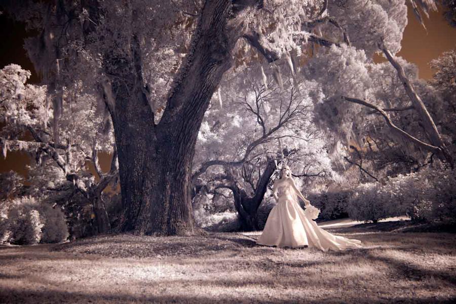 carolina-wedding-bride