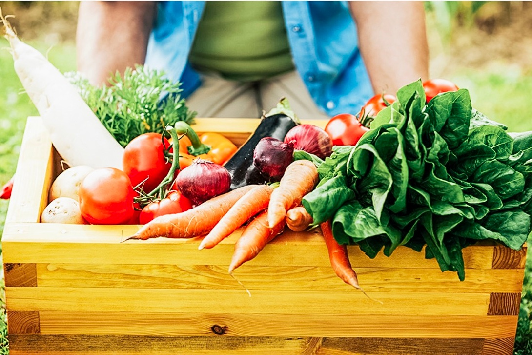 Local Partnerships - We love to support our community and other small businesses! One of our partnerships is with Great River Organics. Great River Organics makes it easy to get local, delicious food on your plate through their CSA Market Bag, that you can conveniently pick up here at BFA!