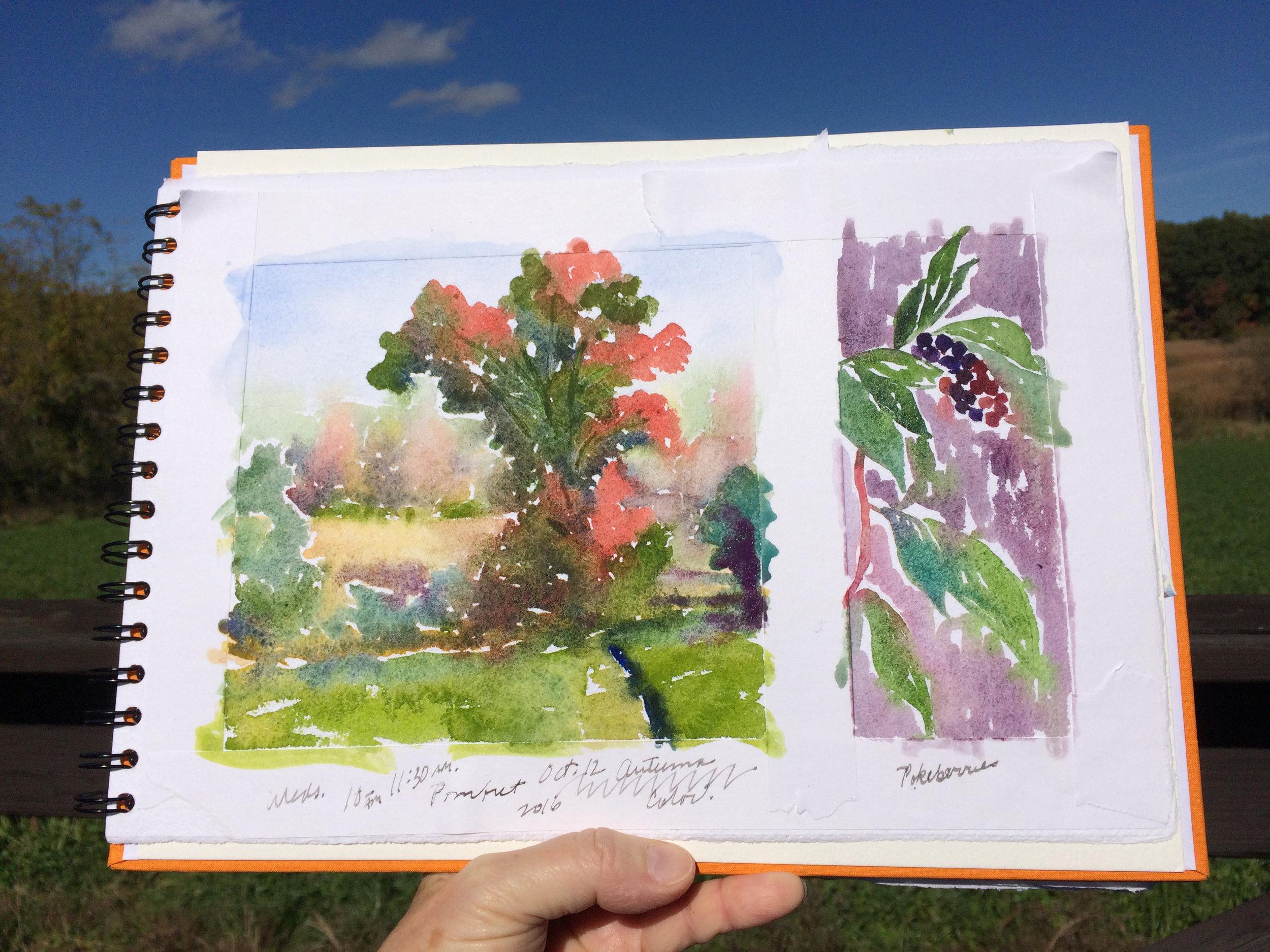 Fall Color, Pomfret, CT.jpg