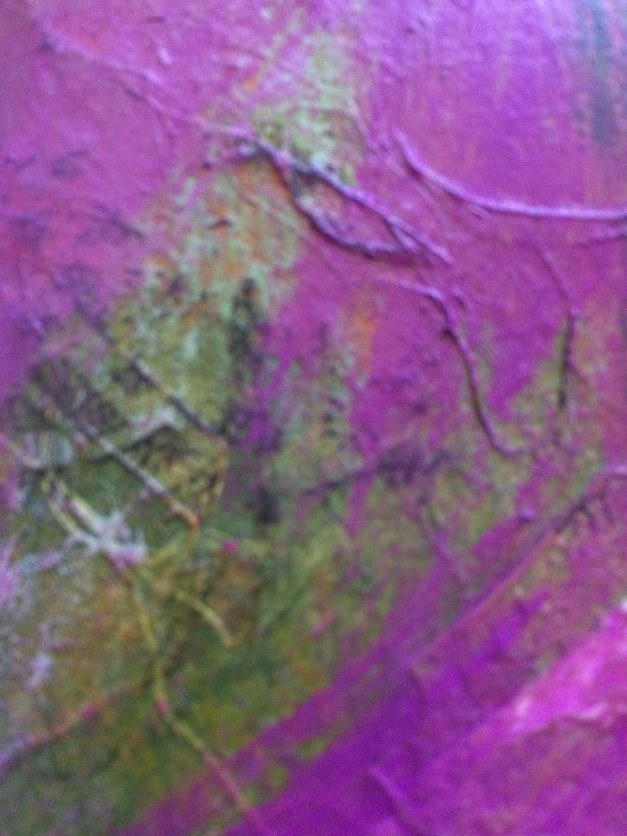 detail, Sound of Foxgloves (3).jpg
