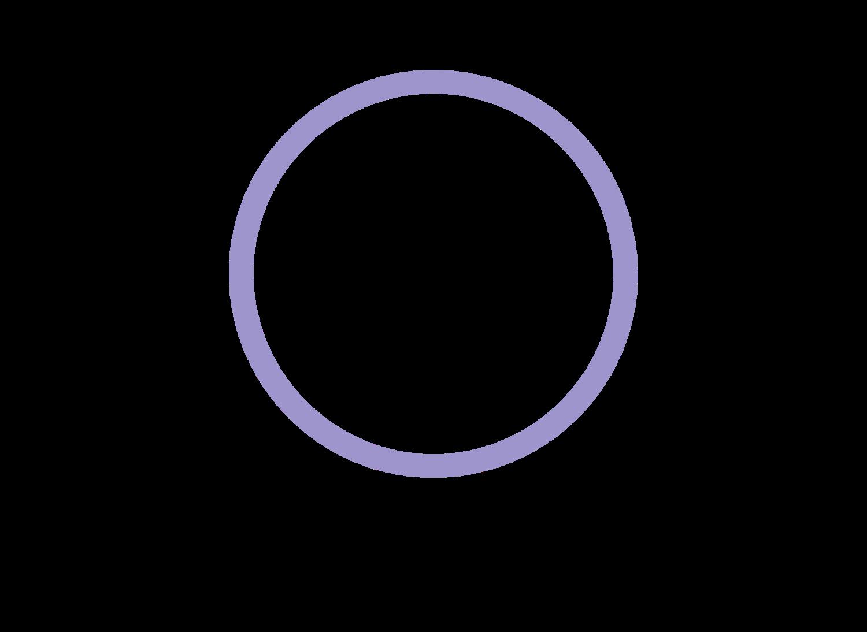 CTF Logo 2017.png