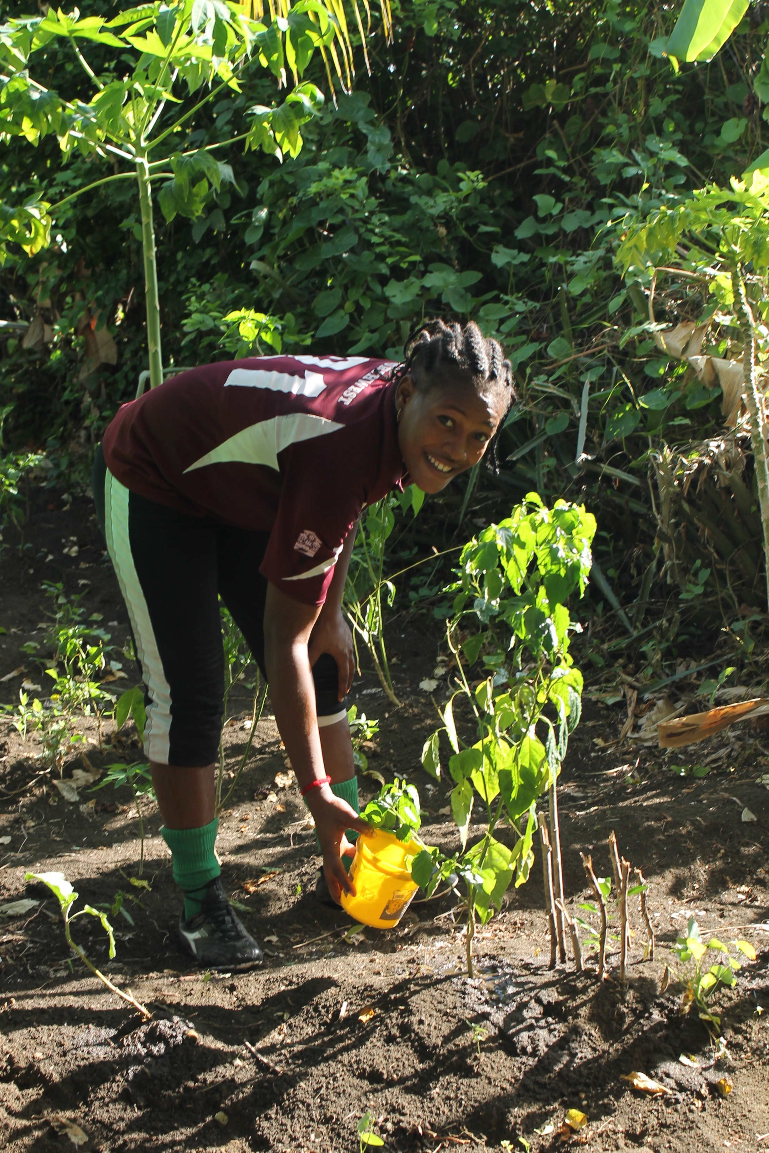 Planting and community service
